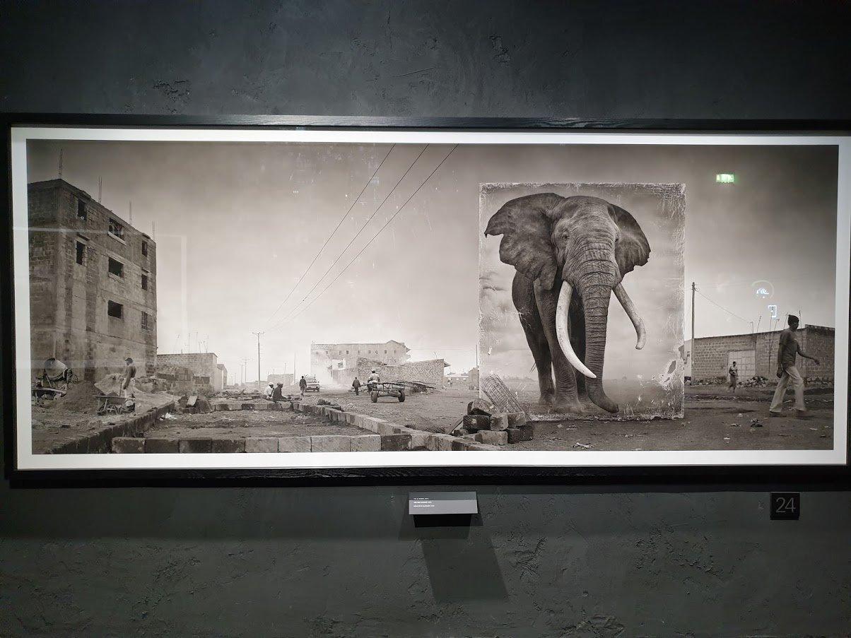 kansallismuseo näyttely