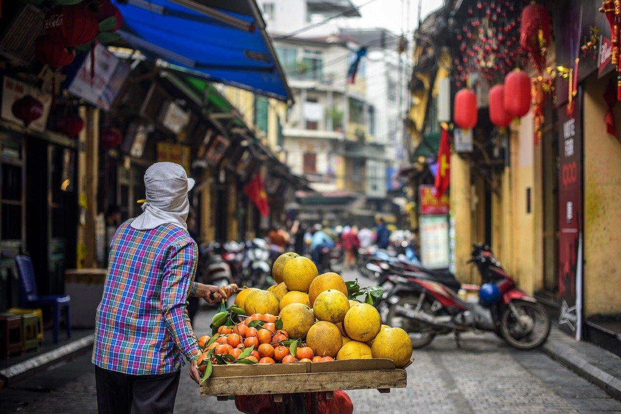 hanoi vietnam kiinalainen horoskooppi uusivuosi rotan vuosi