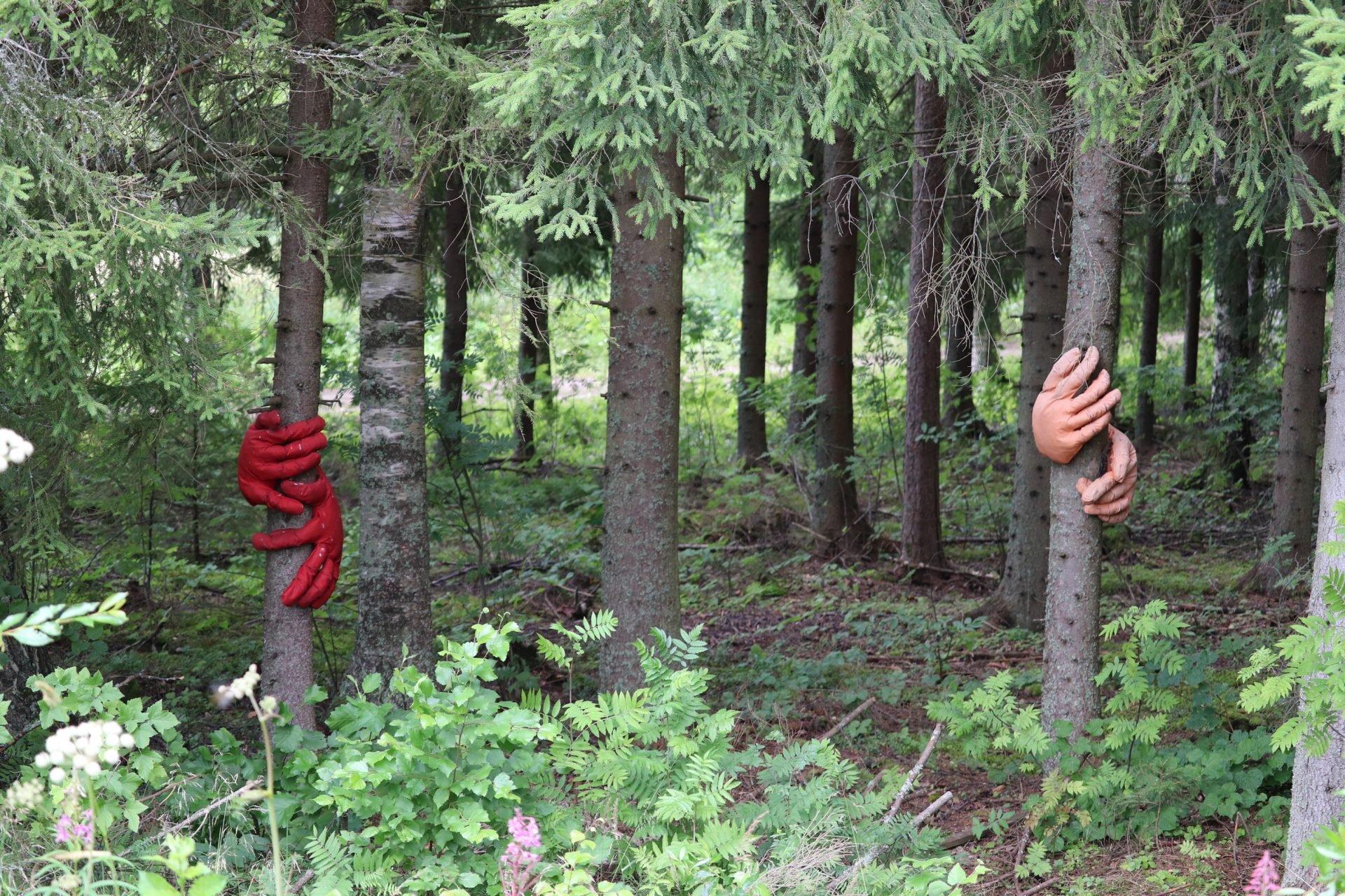 Jäppilänniemen Taidetie metsä
