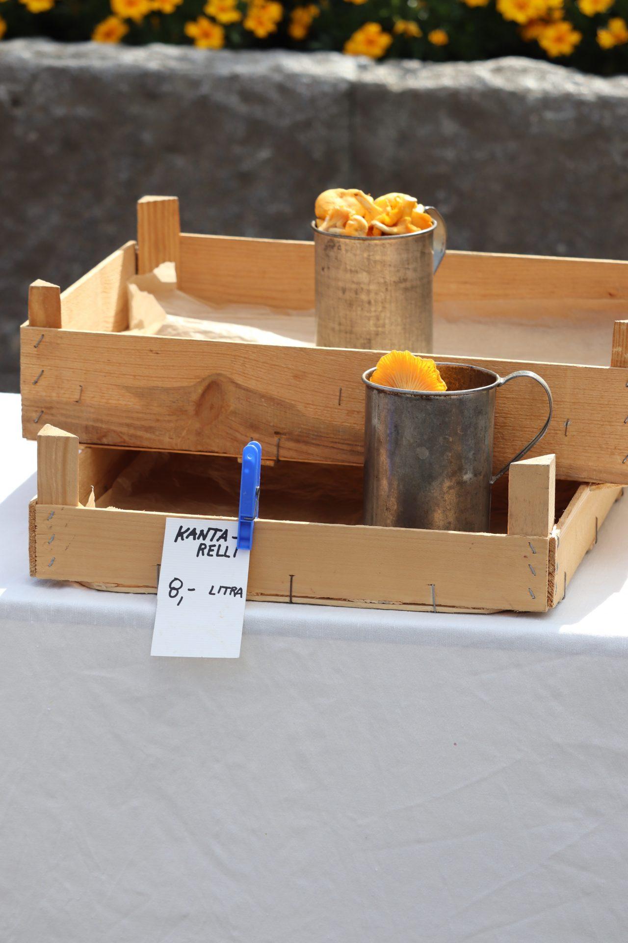 Savonlinna tori puulaatikko kantarelli