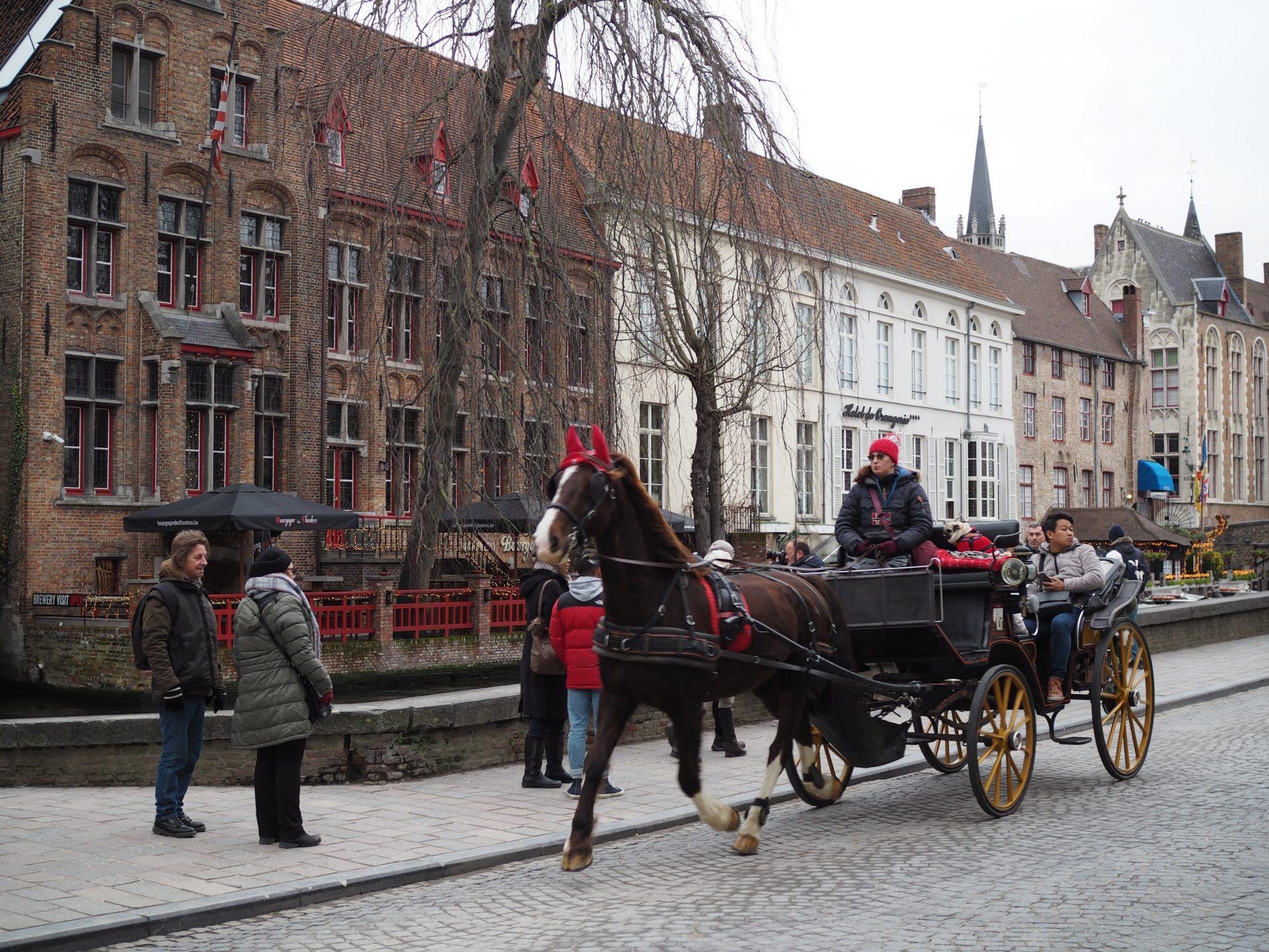 brugge hevonen hevosvaunut hevosajelu kanaali