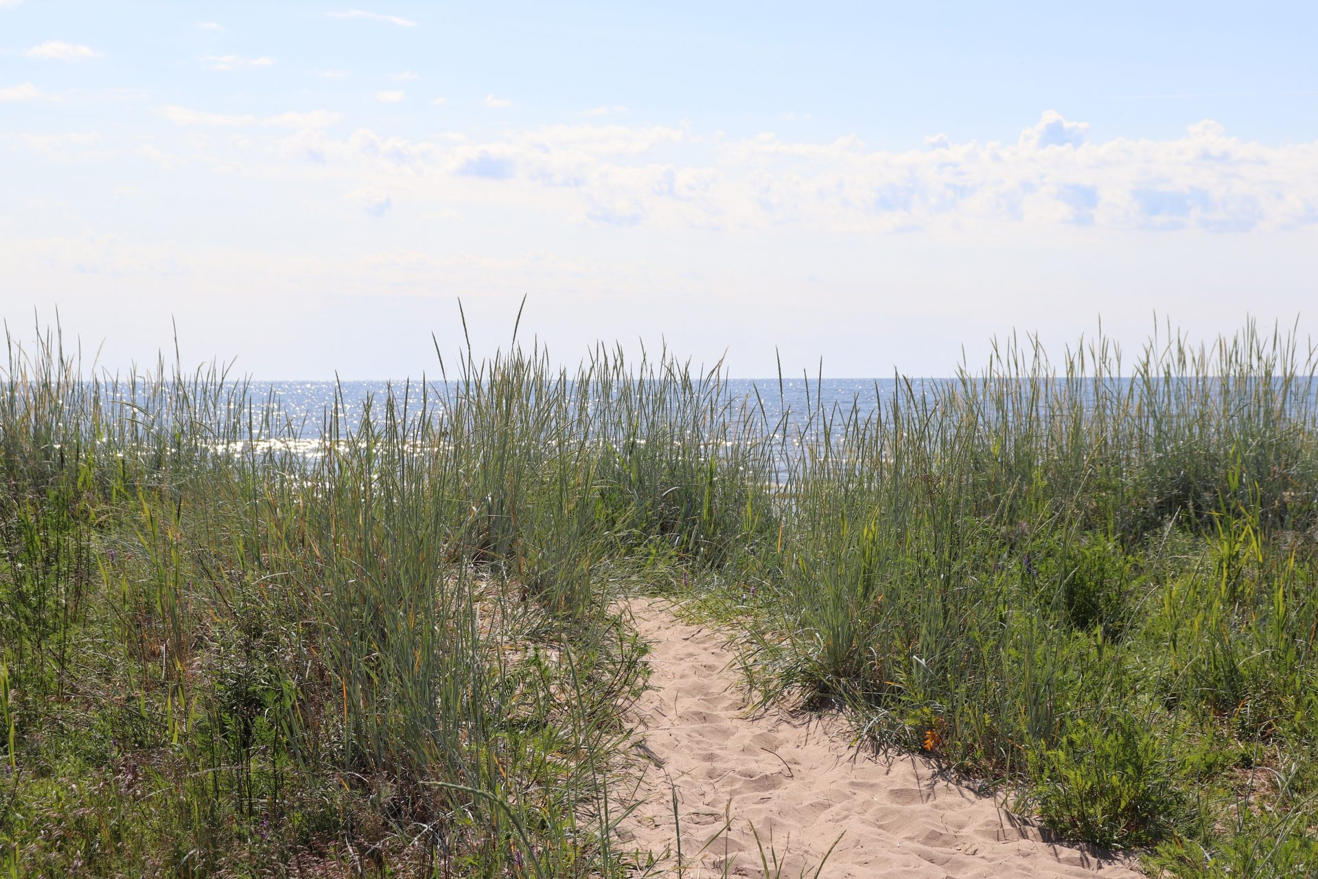 Hailuoto meri hiekkaranta ranta ruoho meri