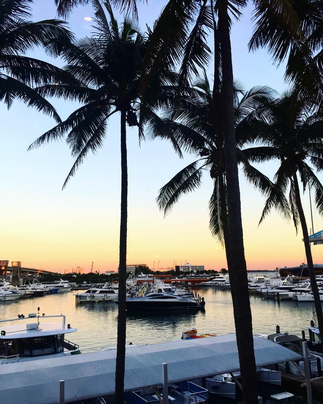 Blogissa nyt 7 x Miamin parhaat palat Unohdin mainita yhdenhellip