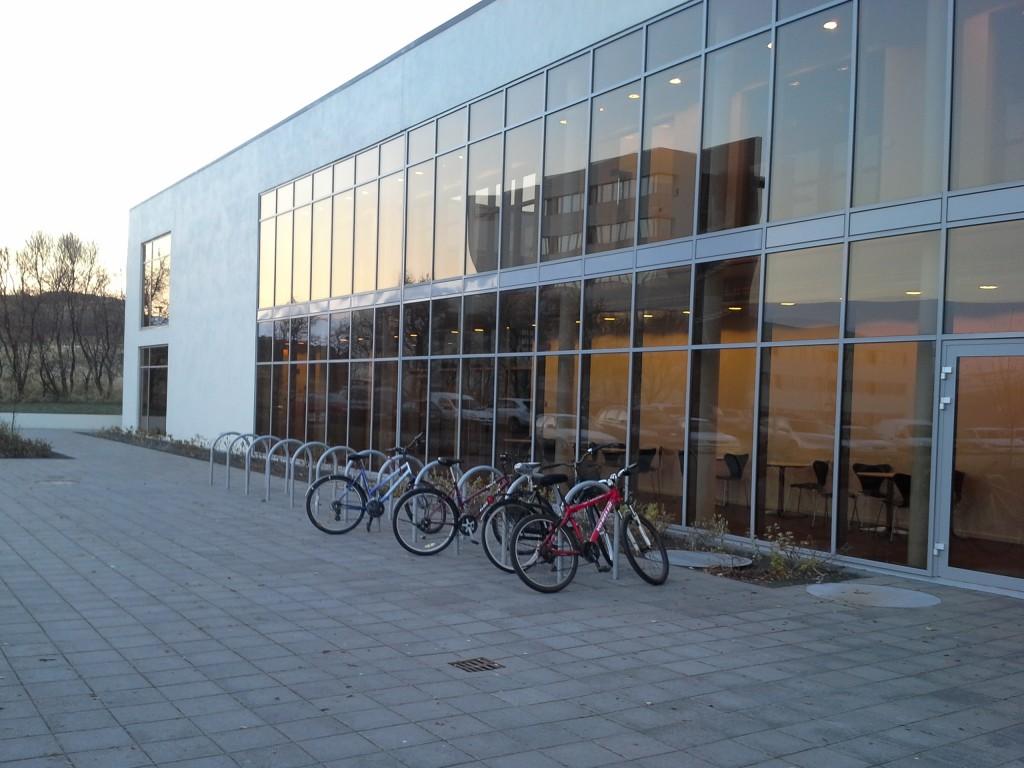 Miten sujuu opiskelu Akureyrin yliopistossa? - Pää Pilvissä