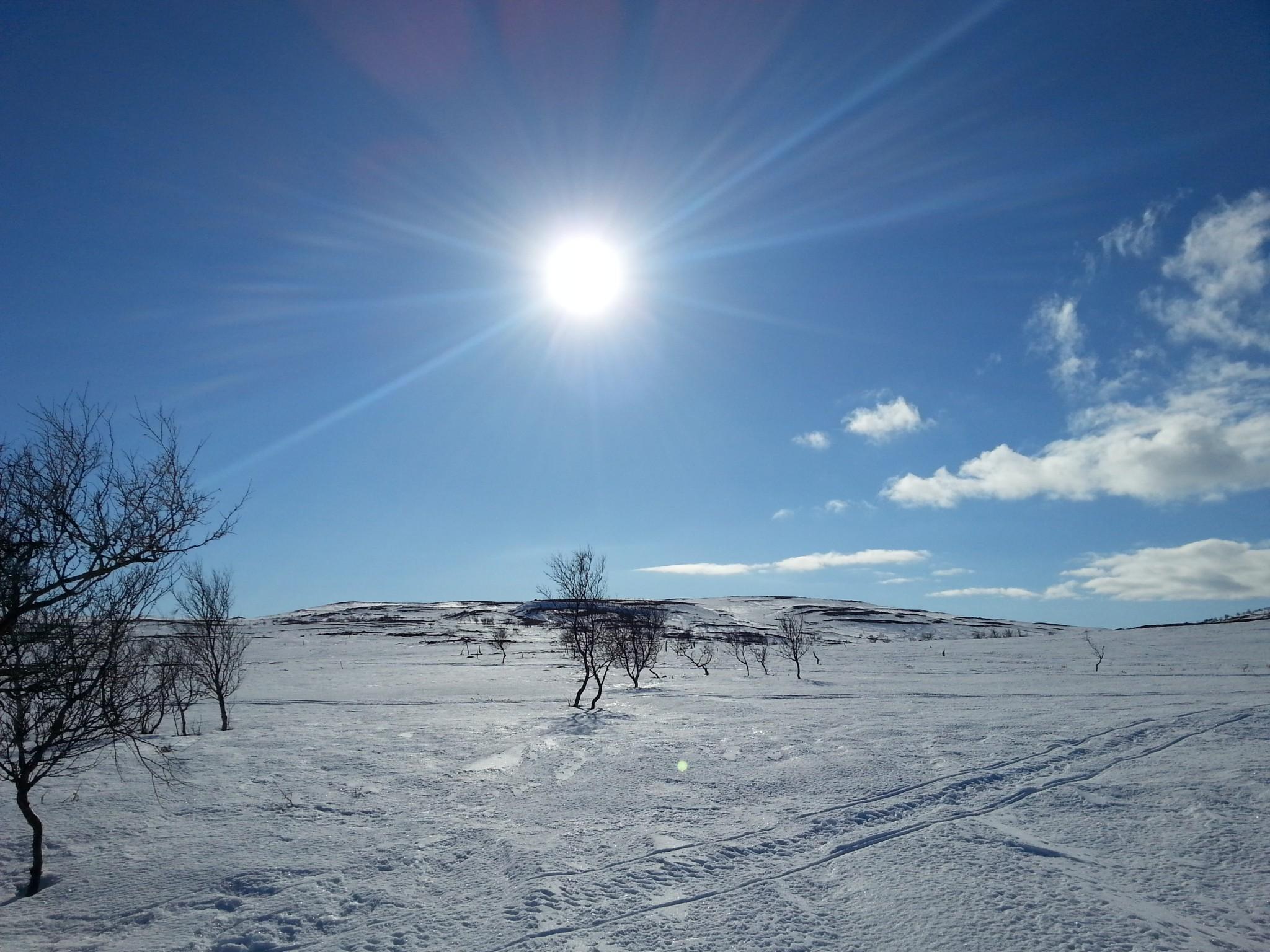 Alma Arktika Kaldoaivi Nuorgam (99)