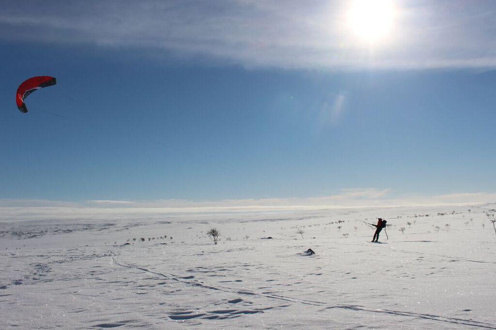 Tämä hauskuus jäi nyt ensi kertaan! (kuva: Alma Arktika)