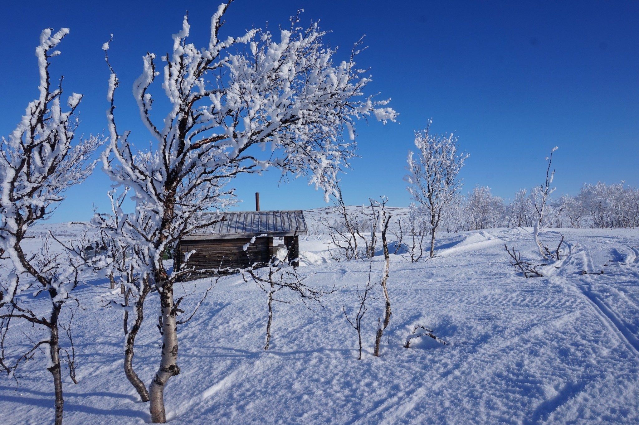 Alma Arktika Kaldoaivi Nuorgam (487)