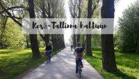 Pyörällä pääsee kesä-Tallinnassa!