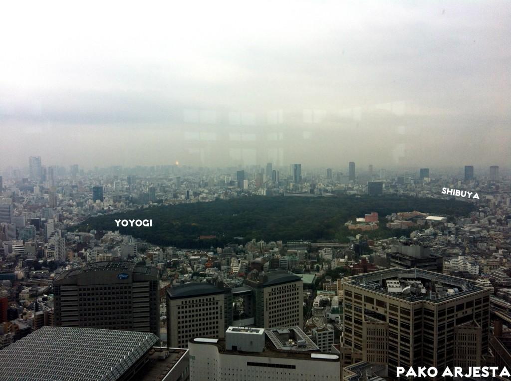 Jättimäinen Yoyogi-puisto Government Buildingista nähtynä