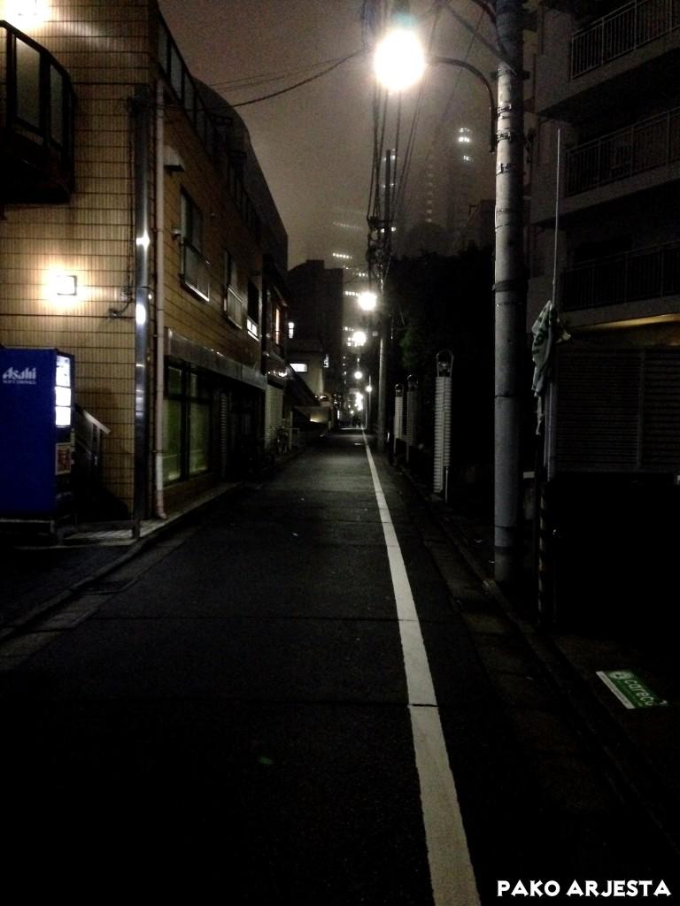 Pikkukatu Shinjukussa. Tämän kadun fiilis oli jotenkin taianomainen.