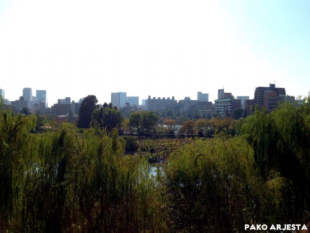 Tokio Ueno puisto