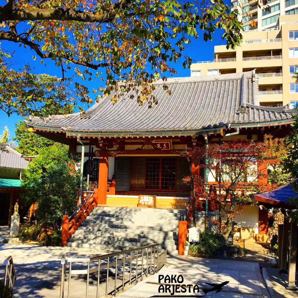 Pyhäkkö Harajuku