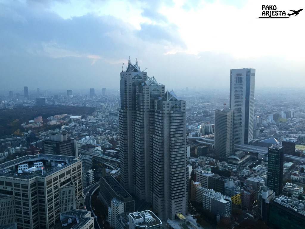 Luulin rakennusta aiemmin joksikin aivan muuksi, mutta Park Hyatt sijaitsee lyhimmän tornin ylimmissä kerroksissa