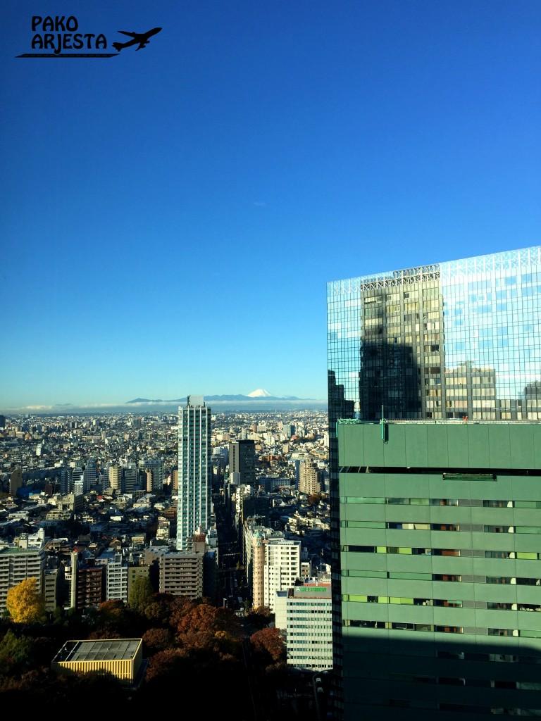 Näköala oli tällainen joka aamu maailman parhaalla hotelliaamiaisella. Taustalla Mt. Fuji.