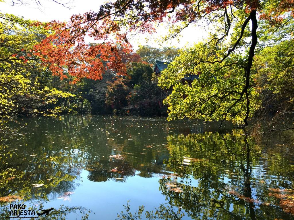 Kichijojin puisto Tokiossa