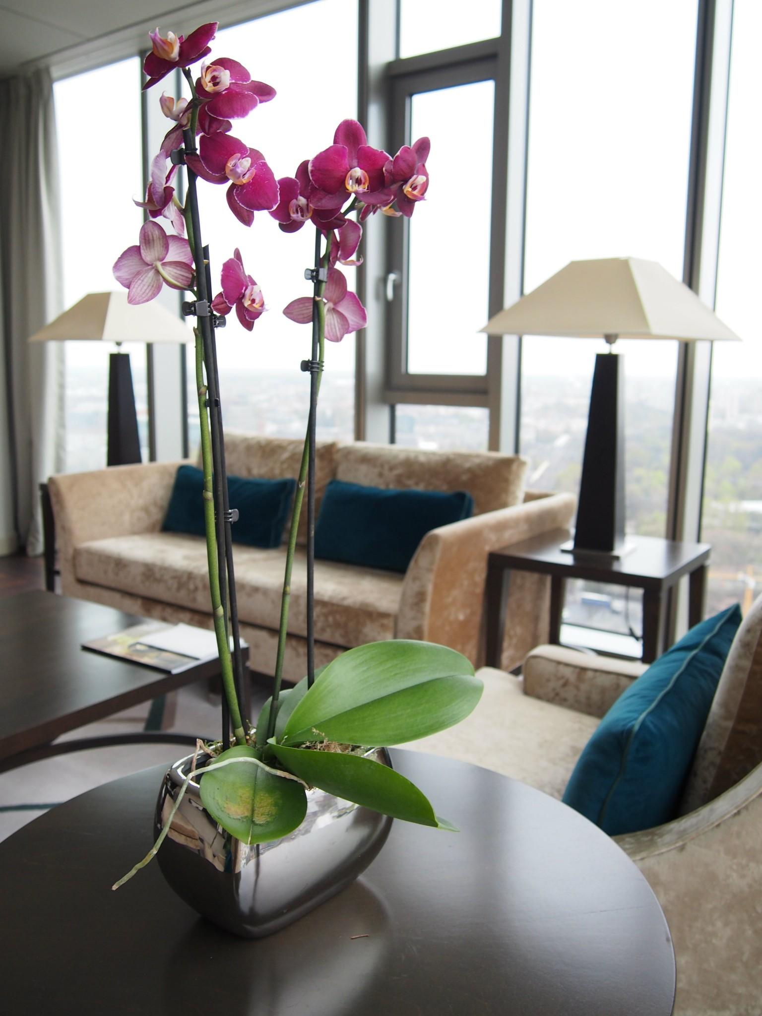 Waldorf Astoria Berlin Tower Suite olohuone 5