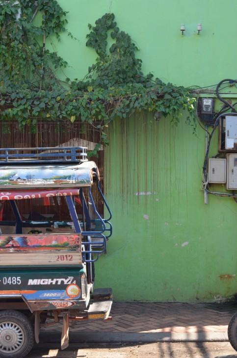 Seinä ja köynnös Vientiane