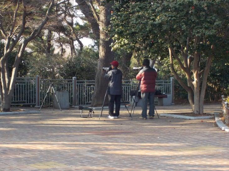 Herrat kuvasivat tosissaan, ainakin varustuksen perusteella Busanissa.
