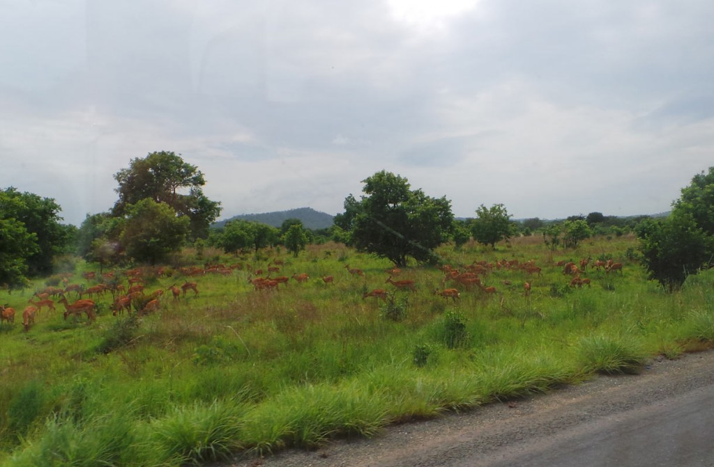 Pondicherry dating sites