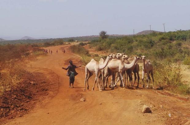 Kenian tiet olivat kamalassa kunnossa. Lisäksi tiellä oli välillä myös tämännäköistä ruuhkaa.