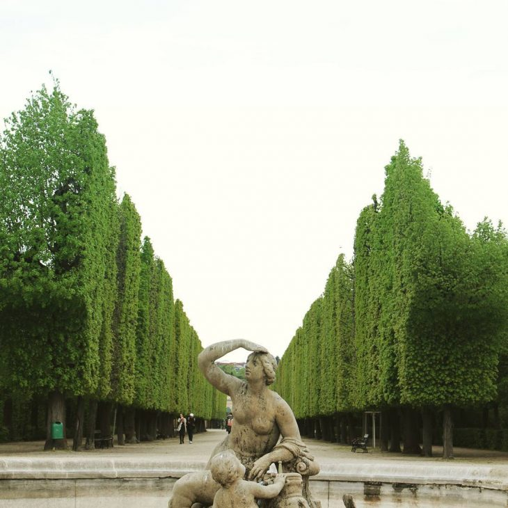 They like their trees square in Vienna! topiary schnbrunnpalace gardenshellip