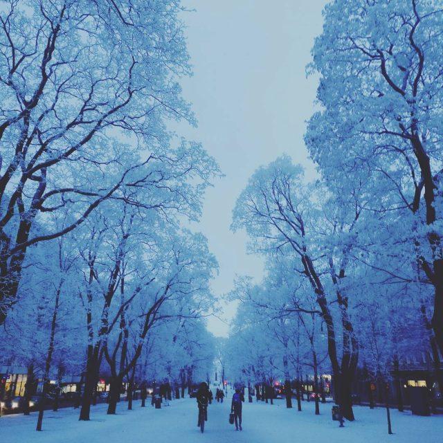 Kaunein talvipiv naismuistiin winterwonderland