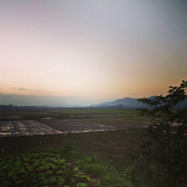 Aurinko laskee riisipeltojen ylle vietnam ricefields ricepaddies