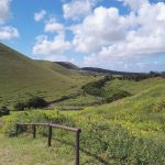 backhome easterisland landscape chile isladepascua chilegram adventure ranskattarenreissut landscape naturehellip