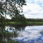 Happy midsummer! juhannus midsommar nature landscape lake thisisfinland suomi summer