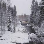 Winter is here! winter ensilumi finland nature winterwonderland talvi
