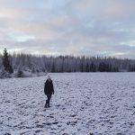 Happy 100th Anniversary Finland! independenceday suomi100 itsenisyyspiv finland winter naturehellip