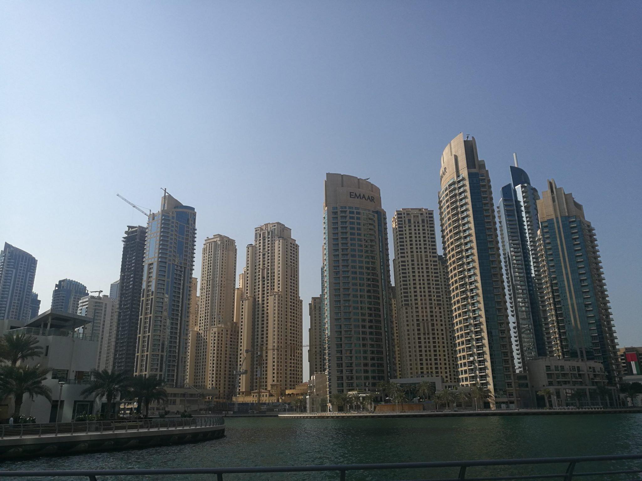 American dating Dubaissa