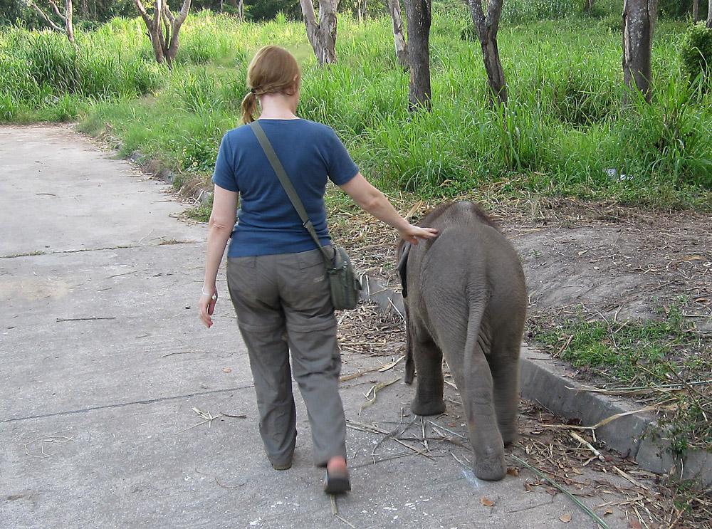 Kaksi pientä elefanttia marssi näin.