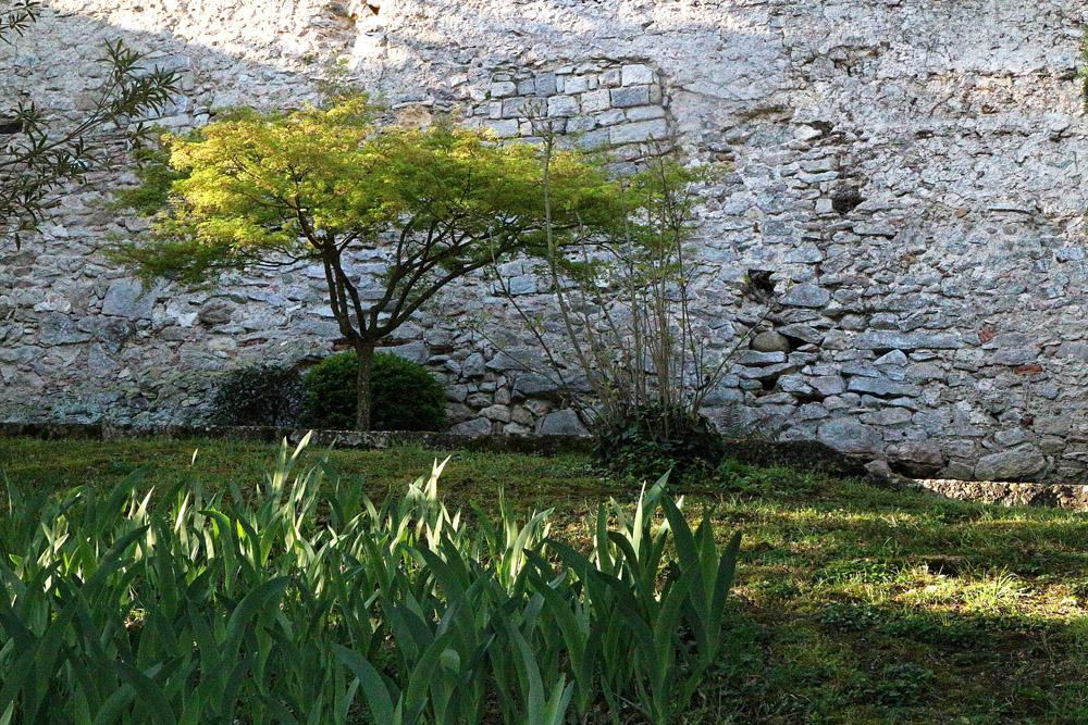 Girona vihreä