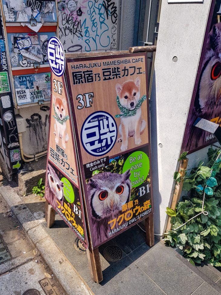 Katustandi jossa mainostetaan koira ja pollokahvilaa