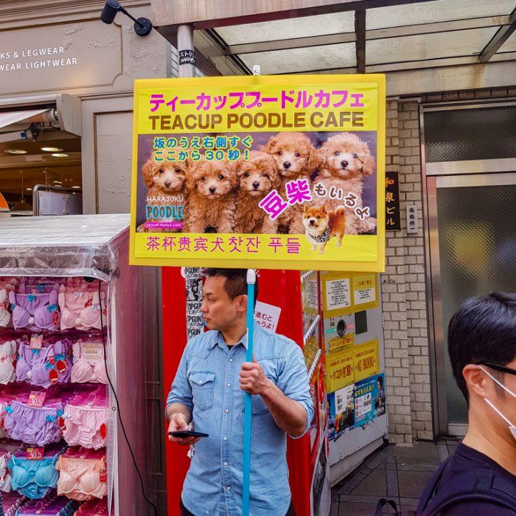 Mies seisoo kadulla ja mainostaa taululla puudeli kahvilaa