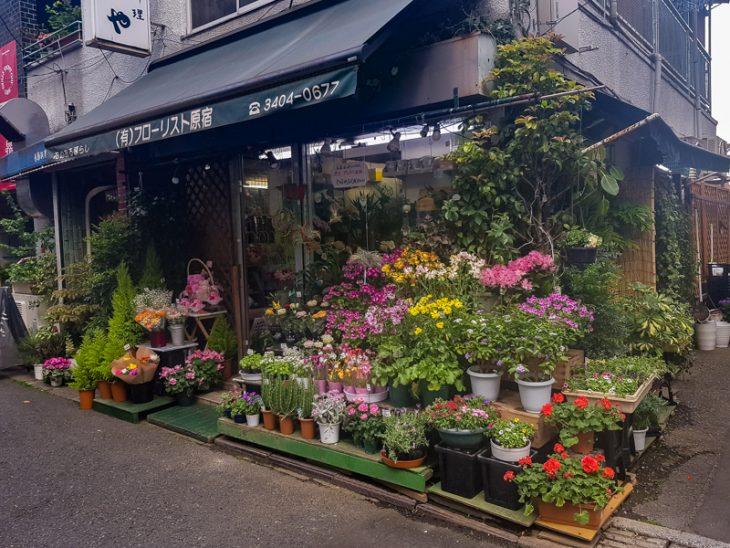 Kukkakauppa jonka edusta taynna kukkia.