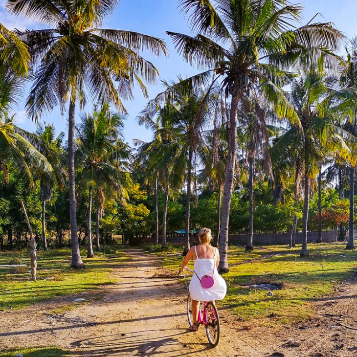 girl riding a bike in a palm tree forest