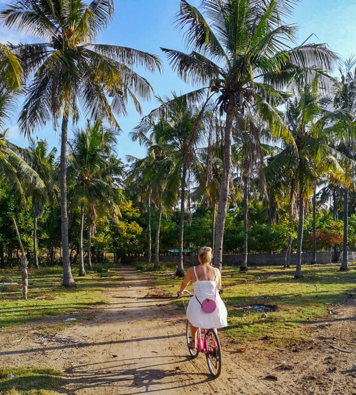 tytto pyorailee palmumetsassa