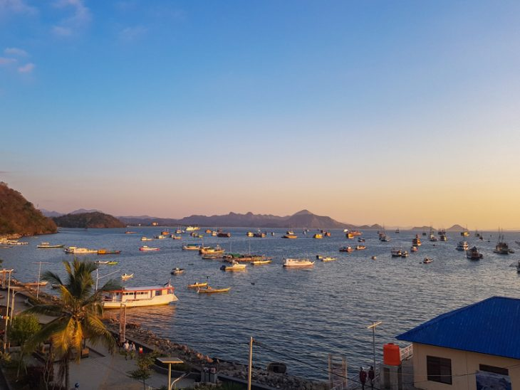 many boats in the sea during sunset