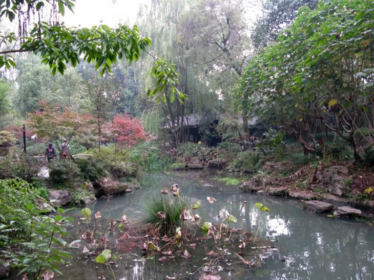 Chengdu puutarha