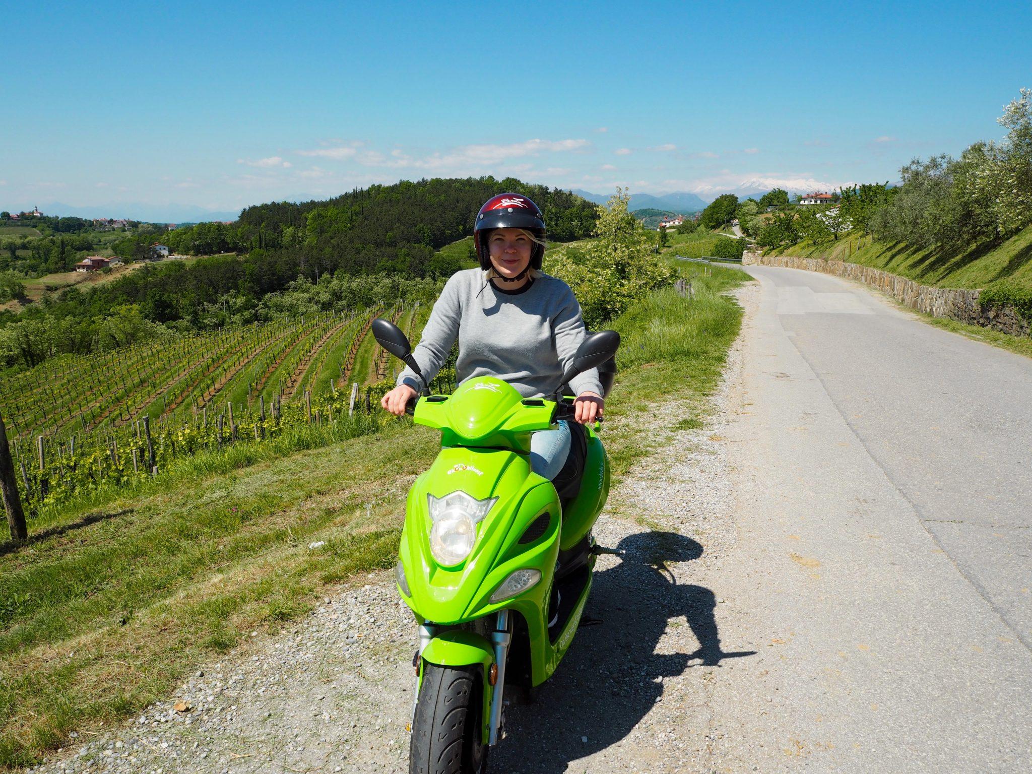 Slovenian viinialue Goriska Brda