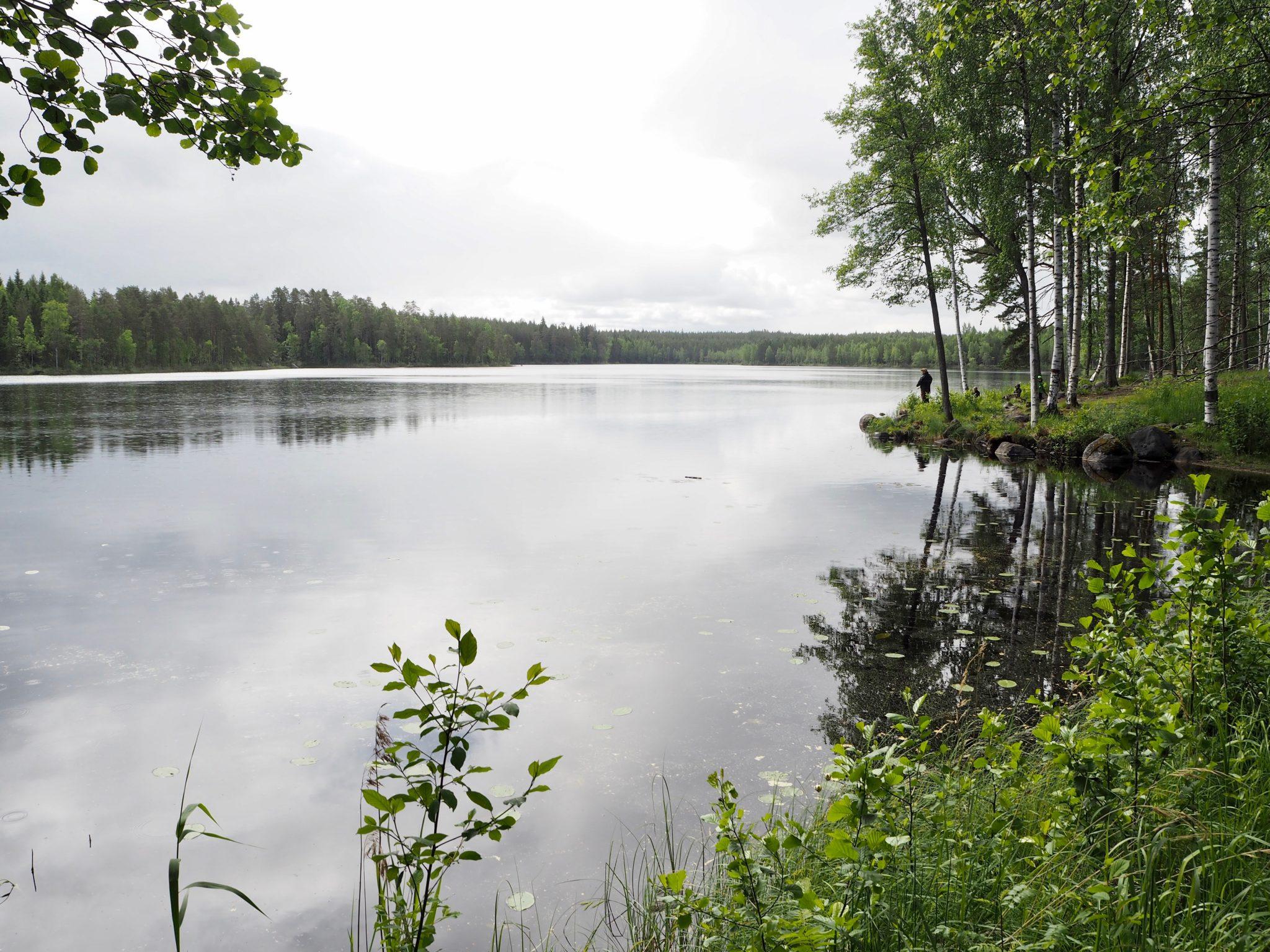 Niemisjärvi Evo