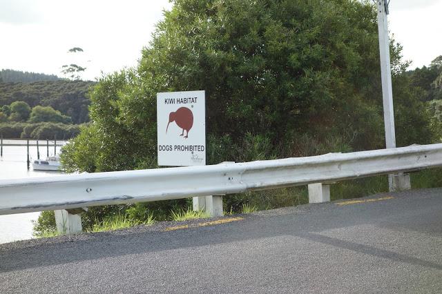 paikallinen asukas Uudessa-Seelannissa