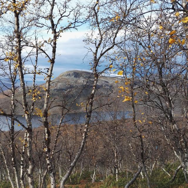 Mallatunturi Saanatunturi Kilpisjärvi