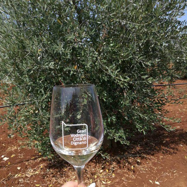 Olipa mahtava piv Aamu alkoi oliiviljy maistelemassa Cadenelan tilalla auringonhellip