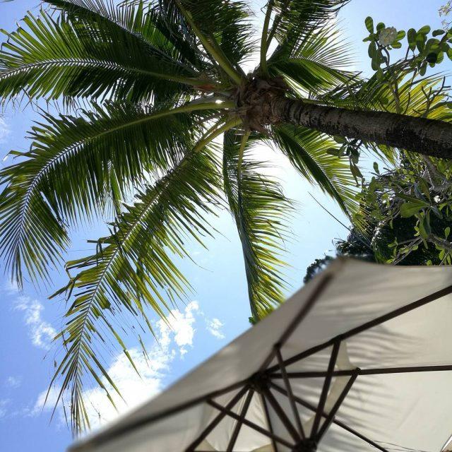 Pivn saa helposti kulumaan palmuja ja pilvi katsellessa hotellin uimaaltaallahellip