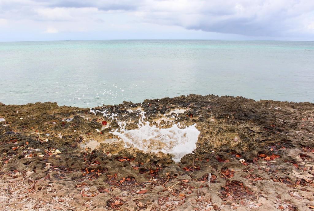 Aruba Kokemuksia