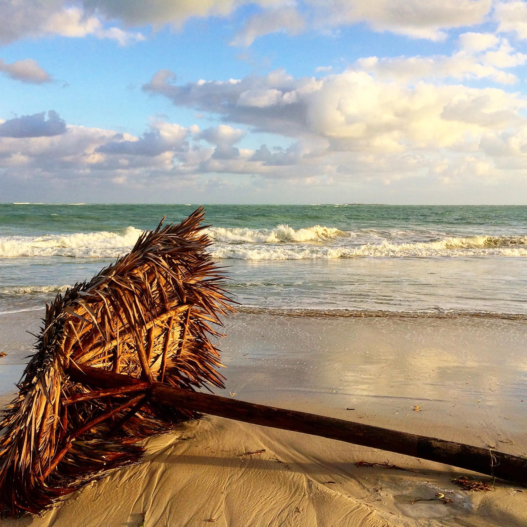 Varaderon rannalla myrskyn jälkeen