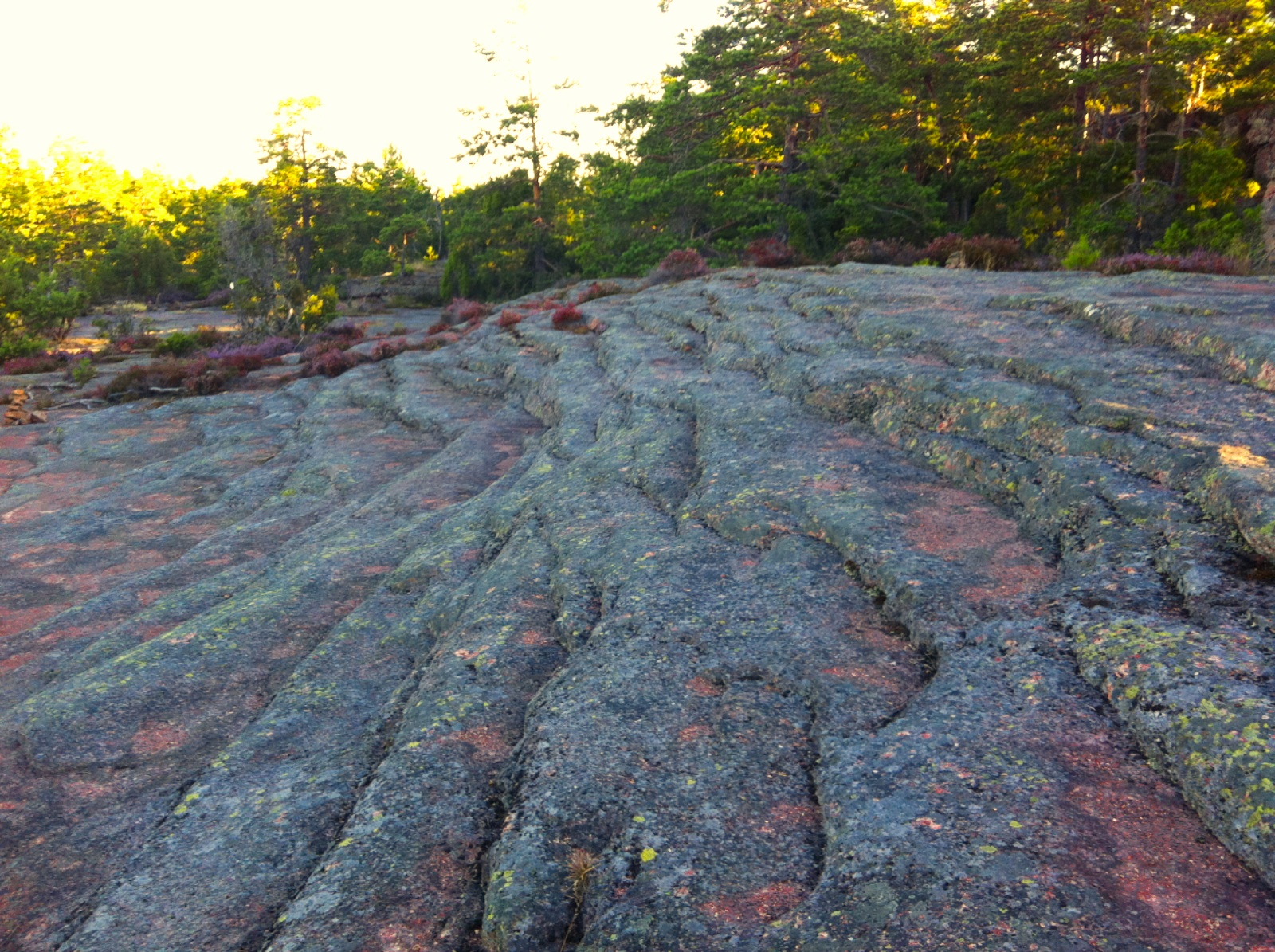 Muinaismeri kalliossa